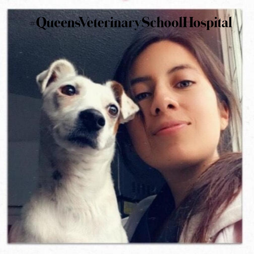 Viviana Rojas QVSH